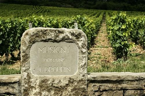Joseph Drouhin: Le Musigny