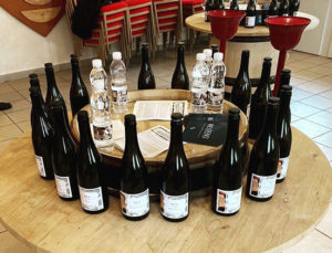 Auction preview: Hospices de Beaune 2019 barrel tasting notes