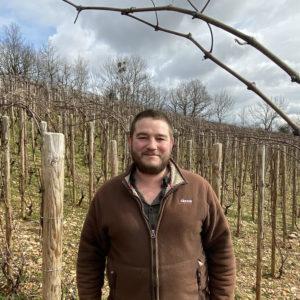 Burgundy Domaine Updates