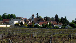 Jasper on Zoom: Grand Crus of Morey St-Denis