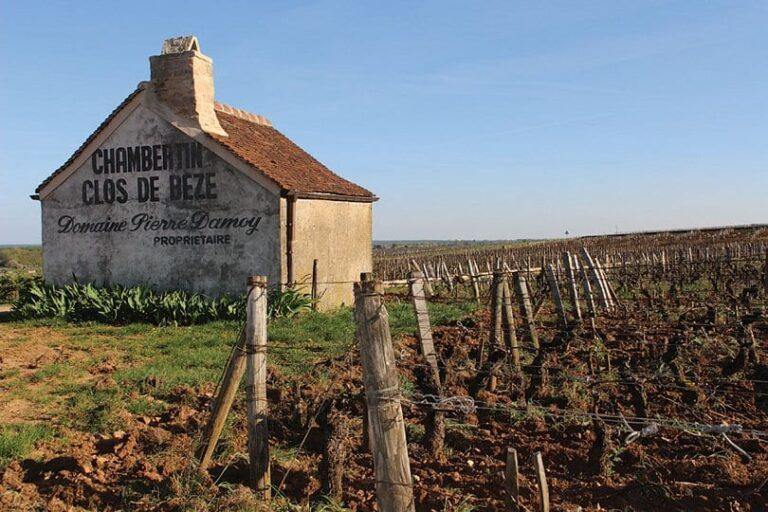 Jasper on Zoom: Grand Cru Burgundy: Chambertin Clos de Bèze