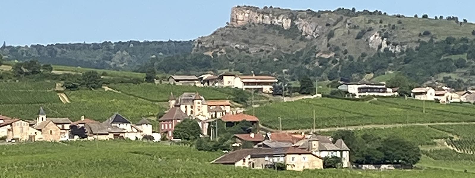 2019 Mâconnais Report