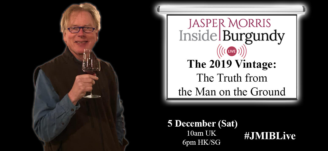 JMIB Live: The 2019 Vintage: The Truth from the Man on the Ground