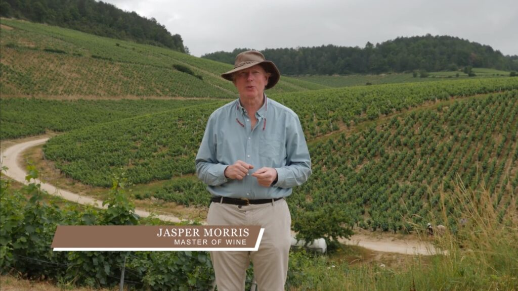 Jasper on Terroir Chablis Grands Cru