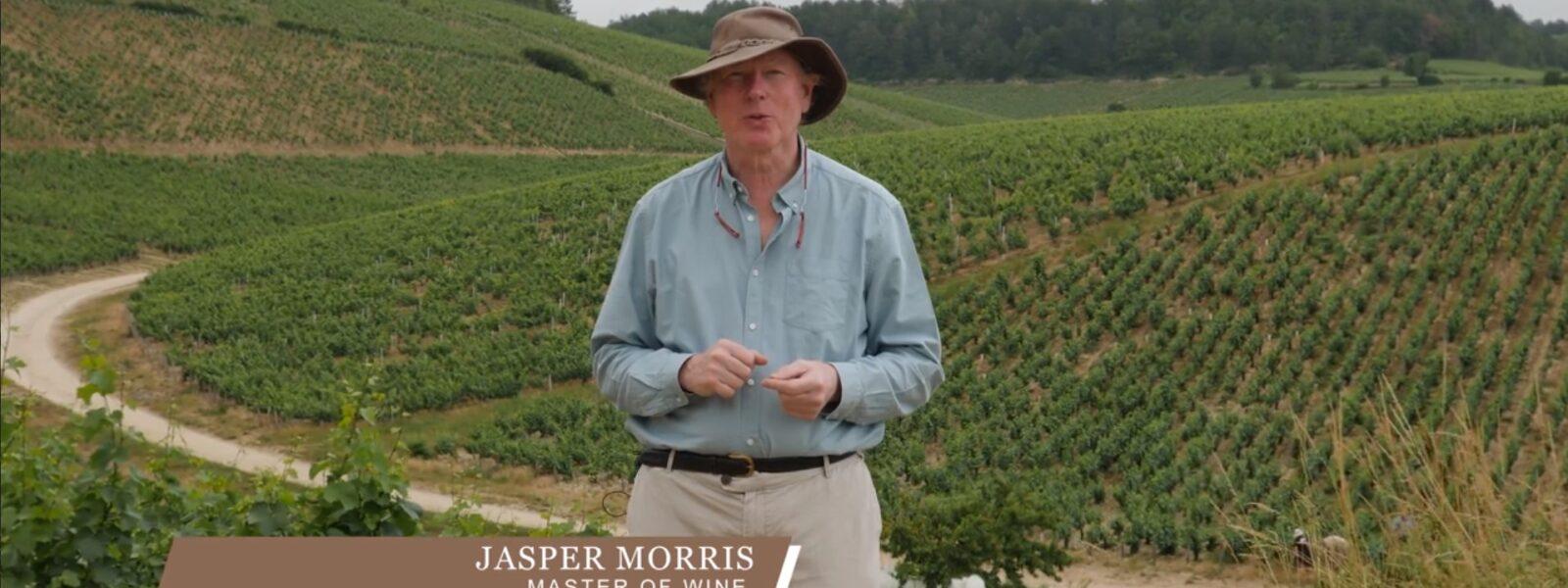 Jasper on Terroir: Chablis Grands Cru