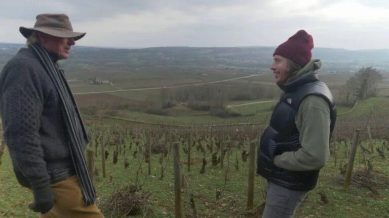 Jasper on Terroir: Chassagne-Montrachet 1er Cru