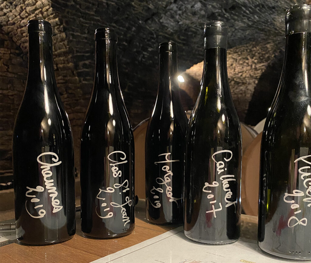 2019 Continued: Chassagne-Montrachet