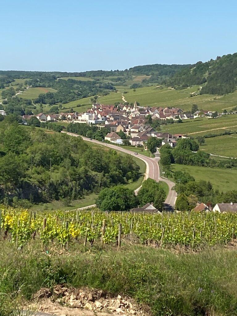 2019 Continued: St-Aubin