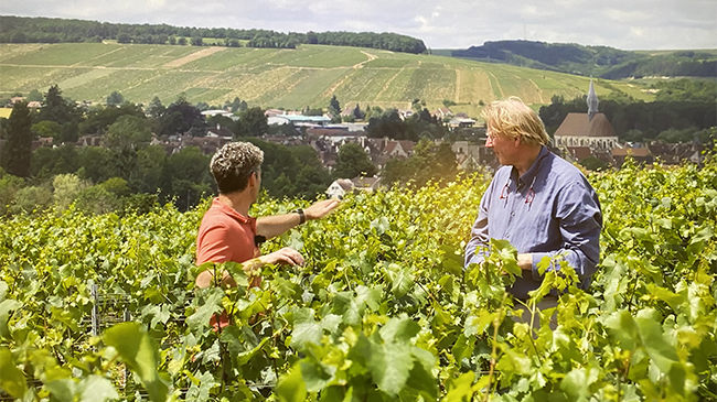 Live from the Vines: Domaine Louis Michel & Fils