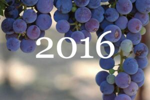 2016 Vintage Overview